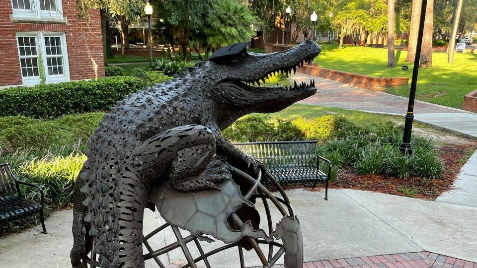 The Gator Ubiquity Statue (GUS) with a graduation cap on