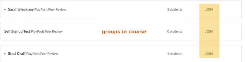 Screen capture of the groups in a Canvas course