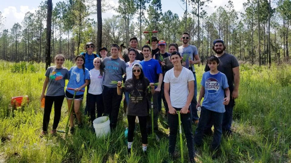 Entrepreneurship students planting trees