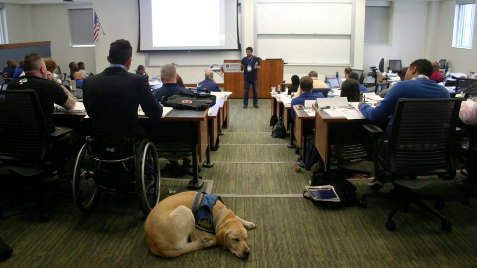 VEP delegates in class as a service dog sleeps in the back of the classroom