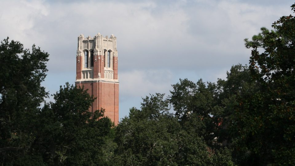 UF's Century Tower as it appears above the trees