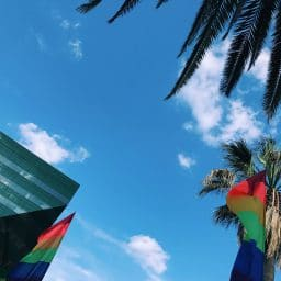 Palm trees, rainbow flags, and a building frame a blue sky with a few wispy clouds