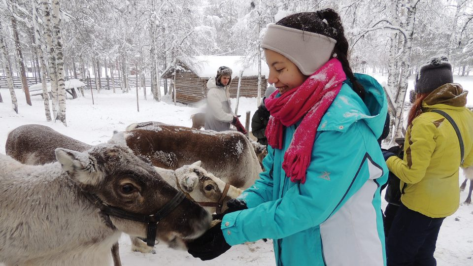 Young woman feeds a reindeer in Lapland, Finland