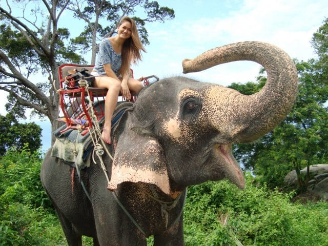 Young woman on an elephant