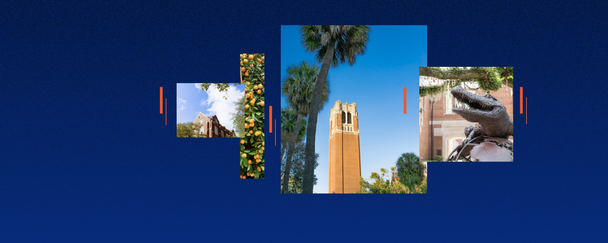 Blue background with images of a large tower, bronze gator statue and campus imagery